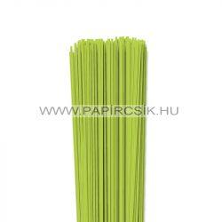 Frühlingsgrün, 2mm Quilling Papierstreifen (120 Stück, 49 cm)